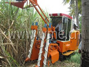 Sugarcane Harvester 4GL-1 in harvesting